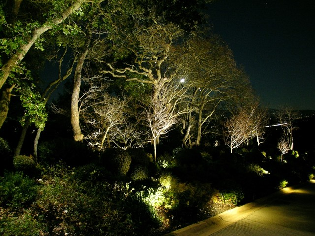 Landscape Lighting Led Conversion : Alamo ca led conversion outdoor lighting landscape san diego by