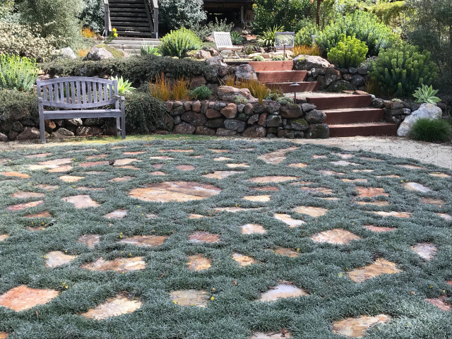 So Long Lawn 6 Walkable Ground Covers, How To Replace Grass With Ground Cover