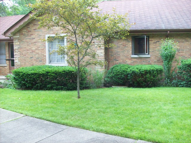 An Edgebrook Rambler traditional-landscape