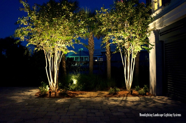 An Oceanfront Oasis Under The Lights Modern Landscape