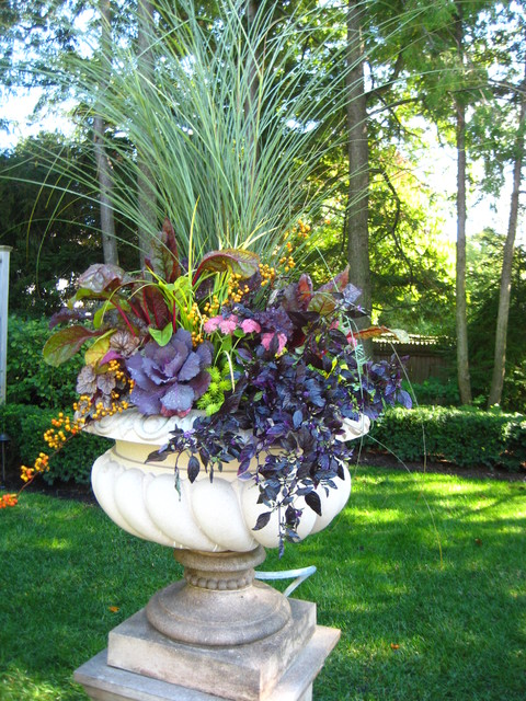 Annual Container Color traditional-landscape
