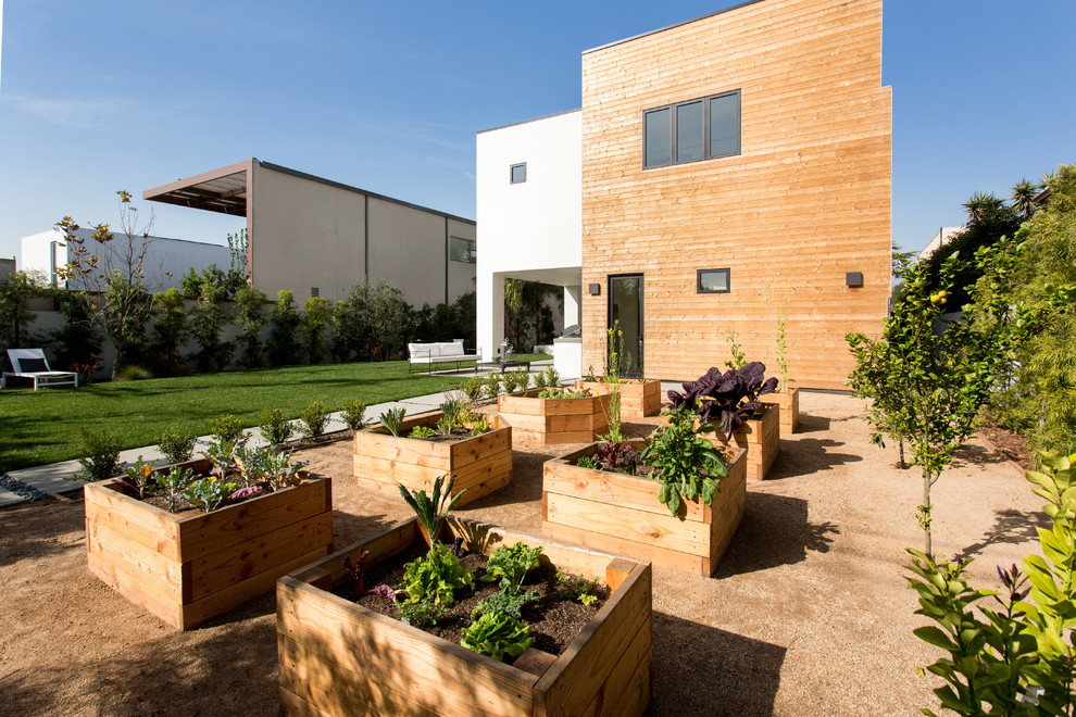 Inspiration for a large contemporary full sun backyard gravel landscaping in Los Angeles.