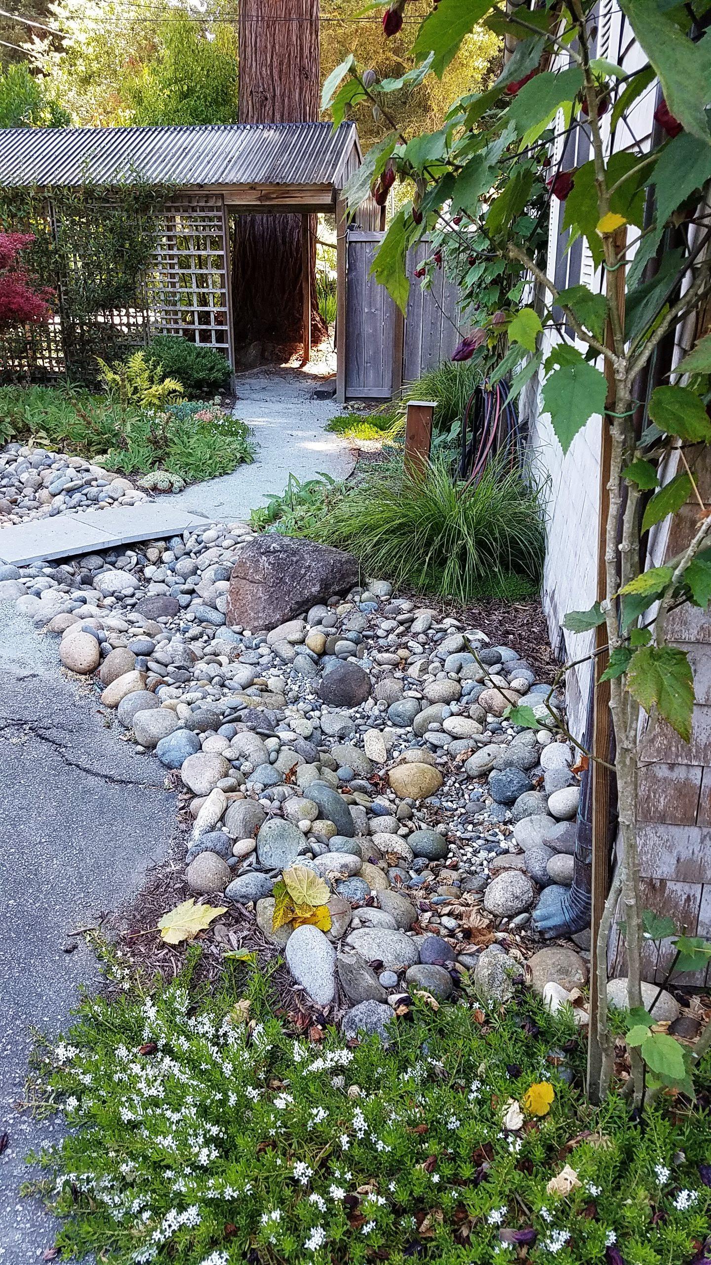 Aptos Shade Garden