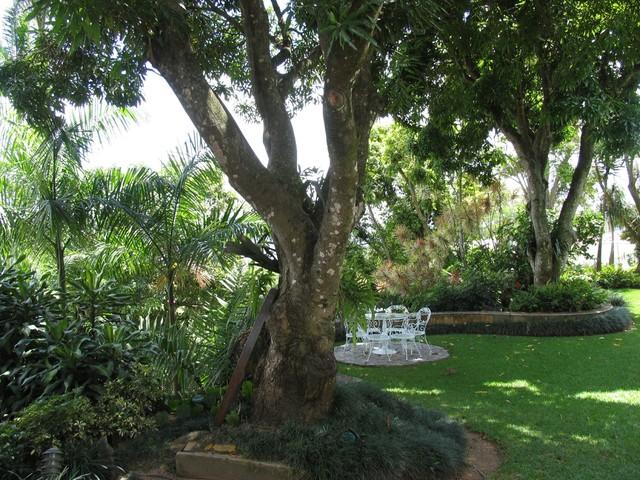 Architec's house tropical-landscape