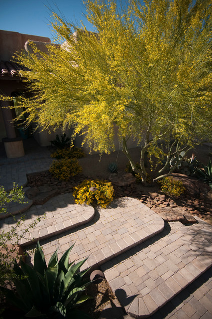 Arid Entryway in Tucson contemporary-landscape