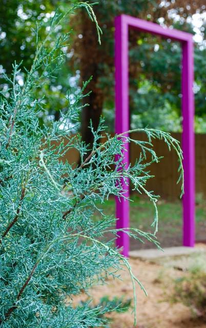 Arizona cypress with violet arbor eclectic-landscape