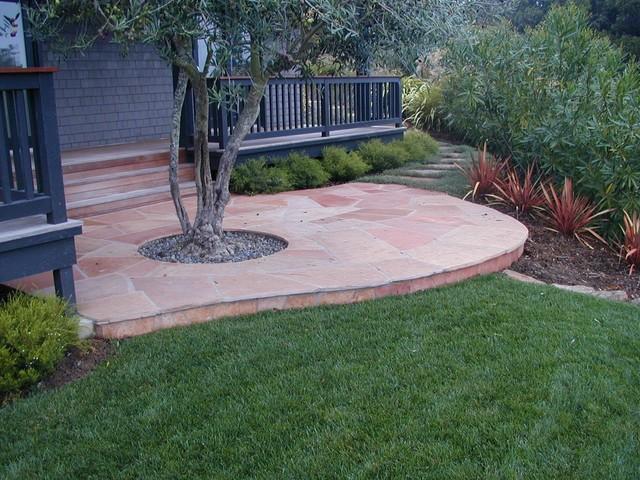 Perfect Arizona Flagstone Patio With Olive Tree Traditional Landscape