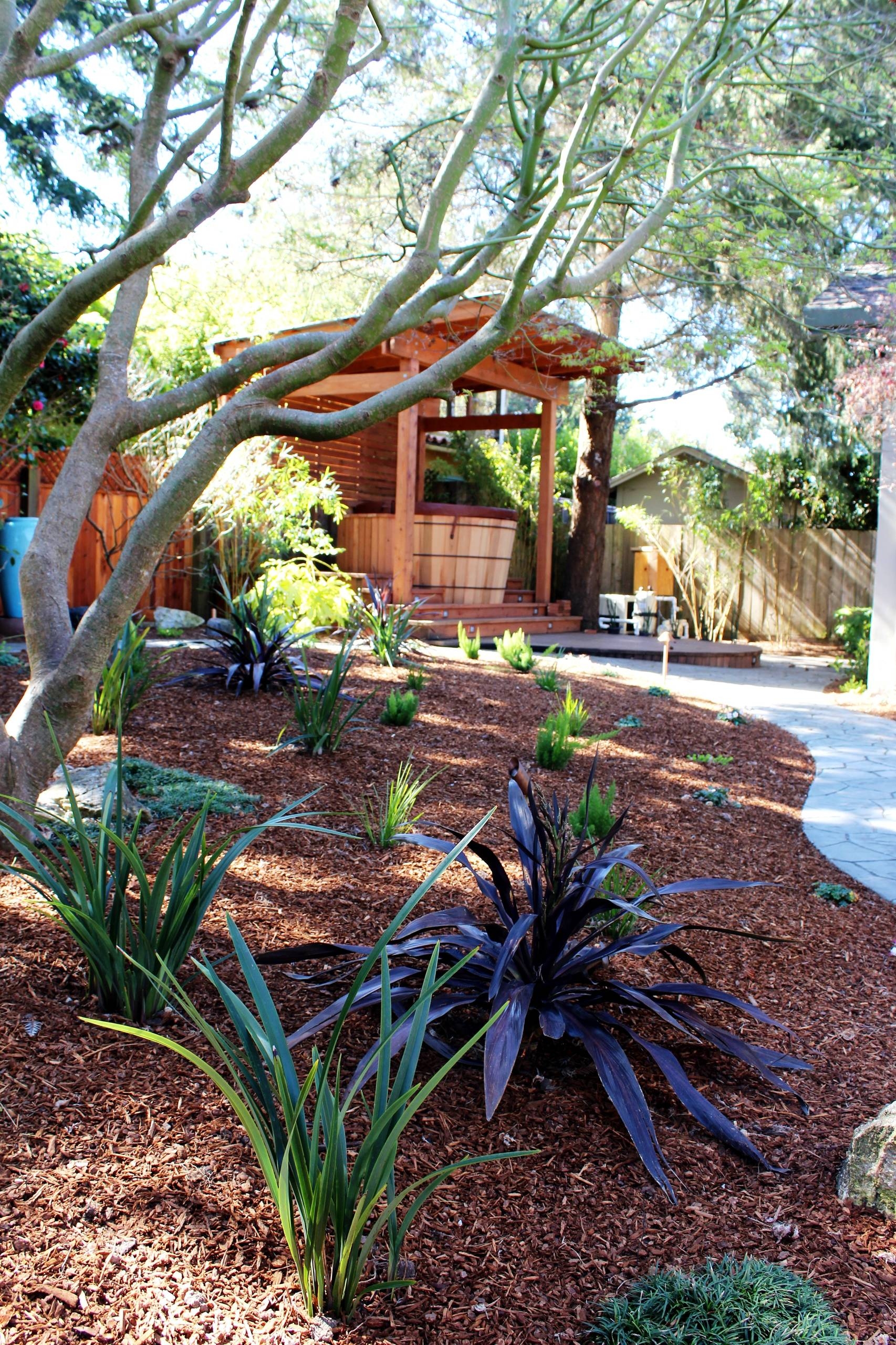 Asian-inspired Shade Garden