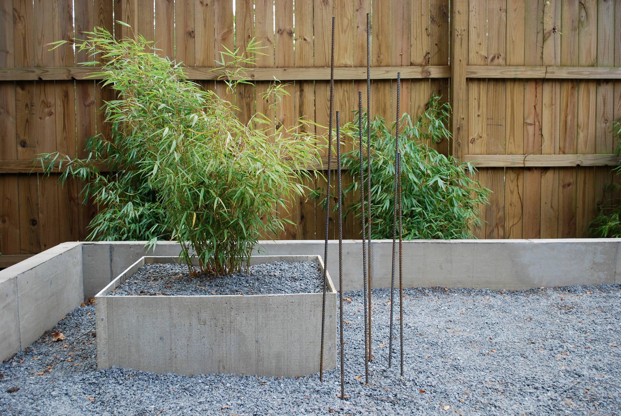 Asian Inspired Woodland Garden