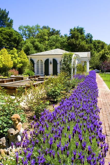 Atherton Garden House traditional-landscape
