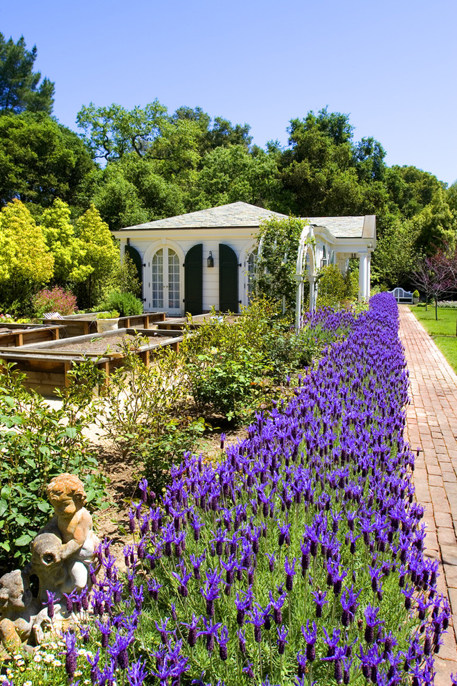 Design ideas for a traditional full sun landscaping in San Francisco for summer.