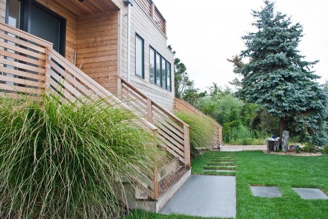 Atlantic Cedar contemporary-landscape