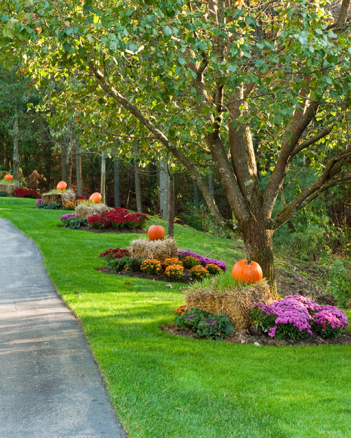 Autumn/Halloween Decor traditional-landscape