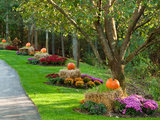 traditional landscape Bewitching Halloween Entryways by Houzzers (28 photos)