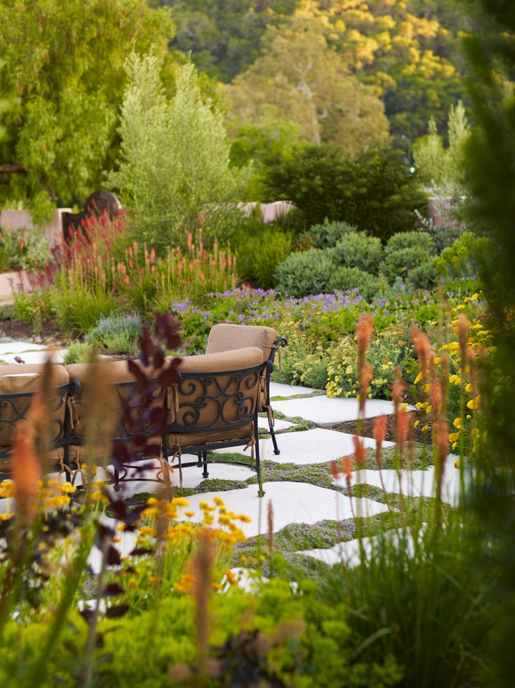 Design ideas for a mediterranean backyard landscaping in San Luis Obispo for fall.