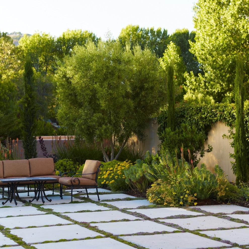 Photo of a mediterranean courtyard landscaping in San Luis Obispo.