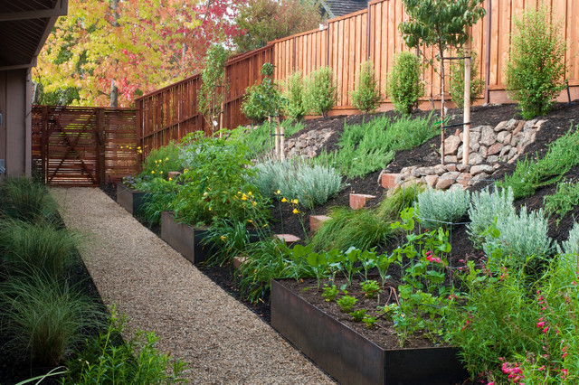 B willow spring contemporary landscape san francisco for Houzz landscape architects