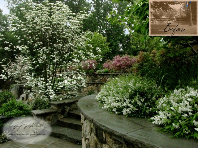 Back Yard Plantings & Stone Walls traditional-landscape