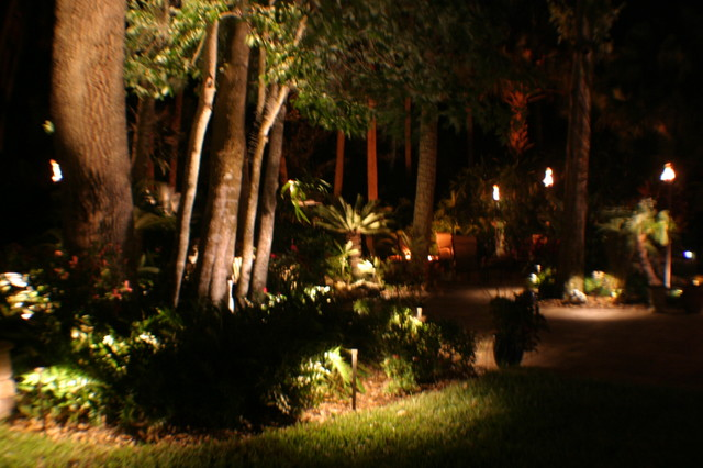 Backyard Ambiance Tropical Garden Jacksonville By Outdoor Lighting Perspectives Of Jacksonville
