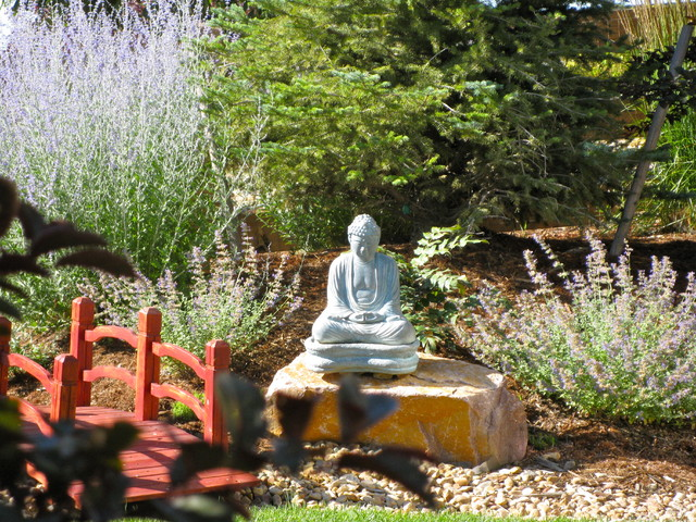 Backyard Buddha contemporary landscape