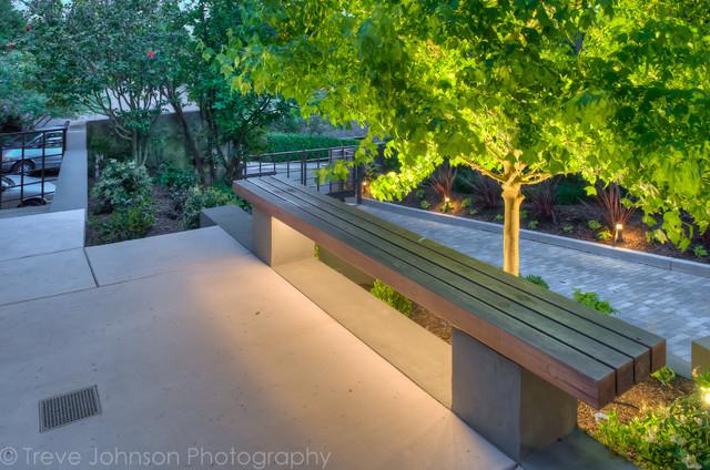 Backyard Garden contemporary-landscape