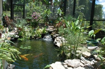 Backyard getaway water features tropical landscape for Koi pond builders tampa