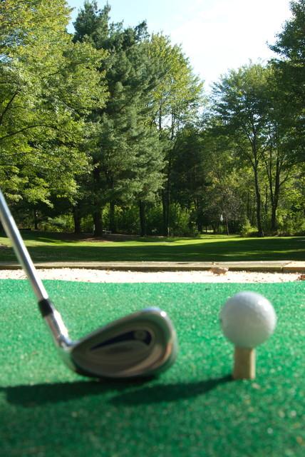 backyard golf greens traditional landscape