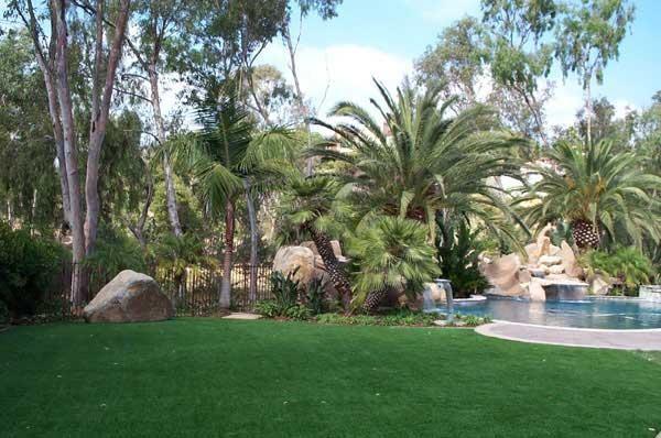 Backyard Installations tropical-landscape