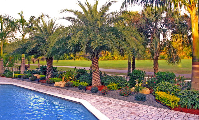 Backyard landscape south florida tropical landscape for Florida backyard landscaping ideas