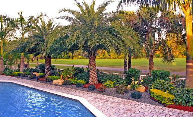 Backyard Landscape South Florida Tropical Landscape