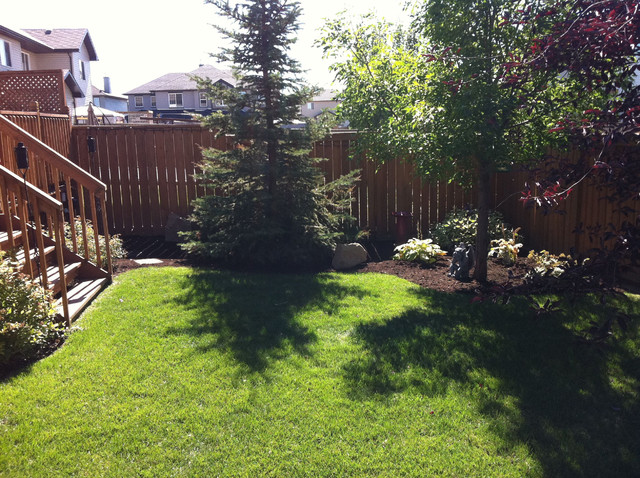 Backyard landscaping contemporary landscape calgary for Backyard designs