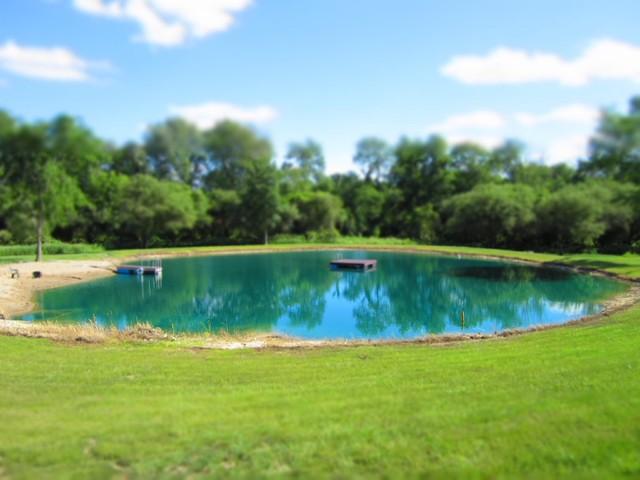 Backyard Pond traditional-landscape