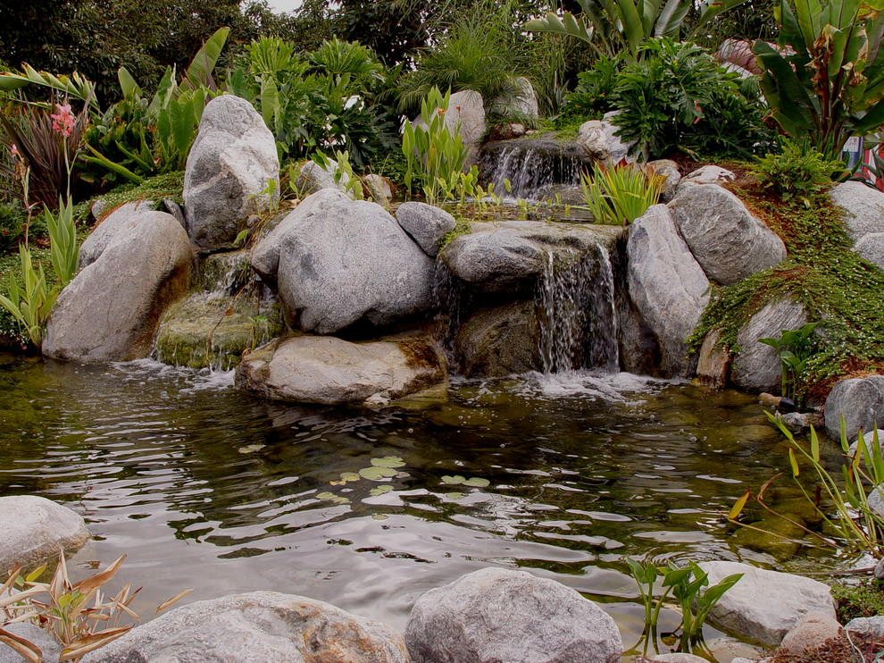 Design ideas for a landscaping in San Diego.