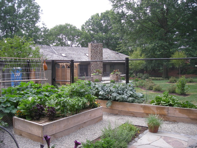 backyard terrace and vegetable garden traditional landscape