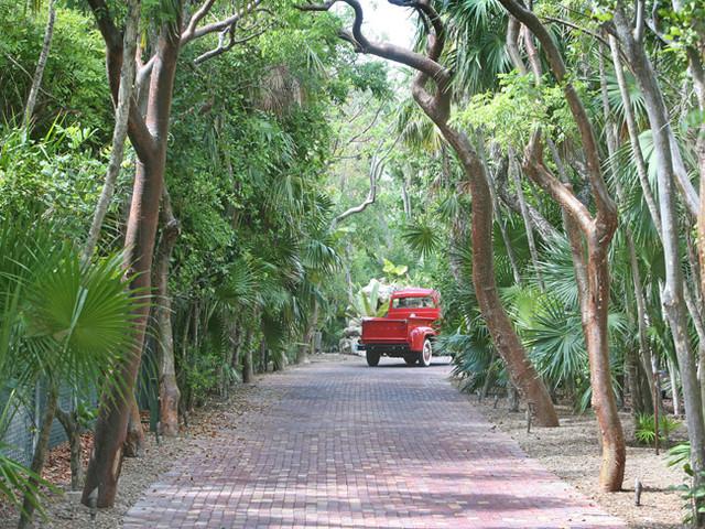 Bait Shack tropical-landscape