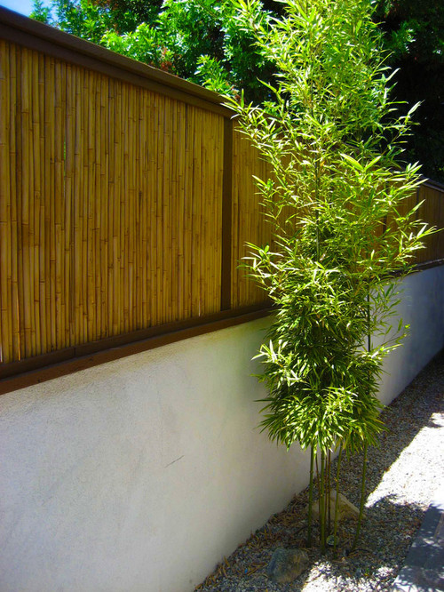 The panels of this bamboo fence are used to make this concrete fence taller and more decorative. Live bamboo is planted in front of it in a narrow trench, and with time, could form a living barrier as well.