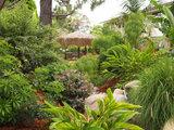 Transport Your Garden to the Tropics (11 photos)