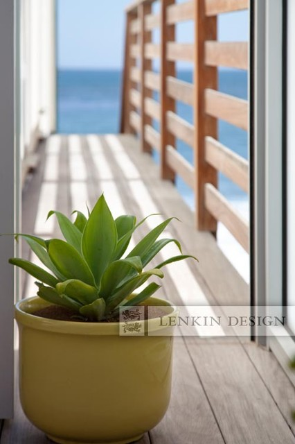 Beach Entry Pot with Agave contemporary-landscape