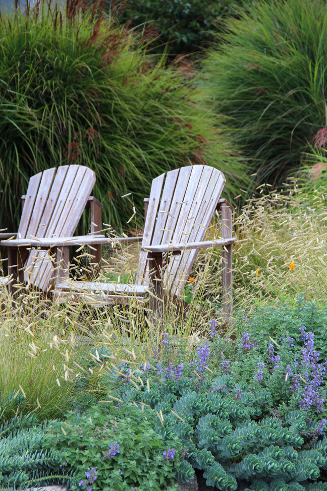 This is an example of a coastal backyard landscaping in Seattle.