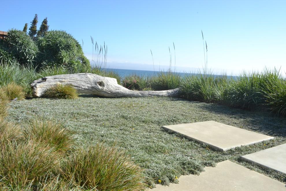Inspiration for a coastal full sun backyard landscaping in San Luis Obispo.