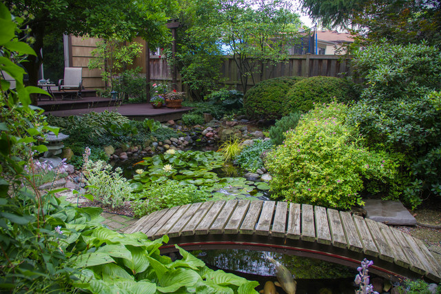 Beautiful Backyard Ponds : Beautiful Ponds in Downers Grove  Traditional  Landscape  chicago