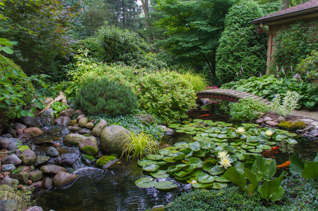 Beautiful Ponds In Downers Grove Traditional Garden