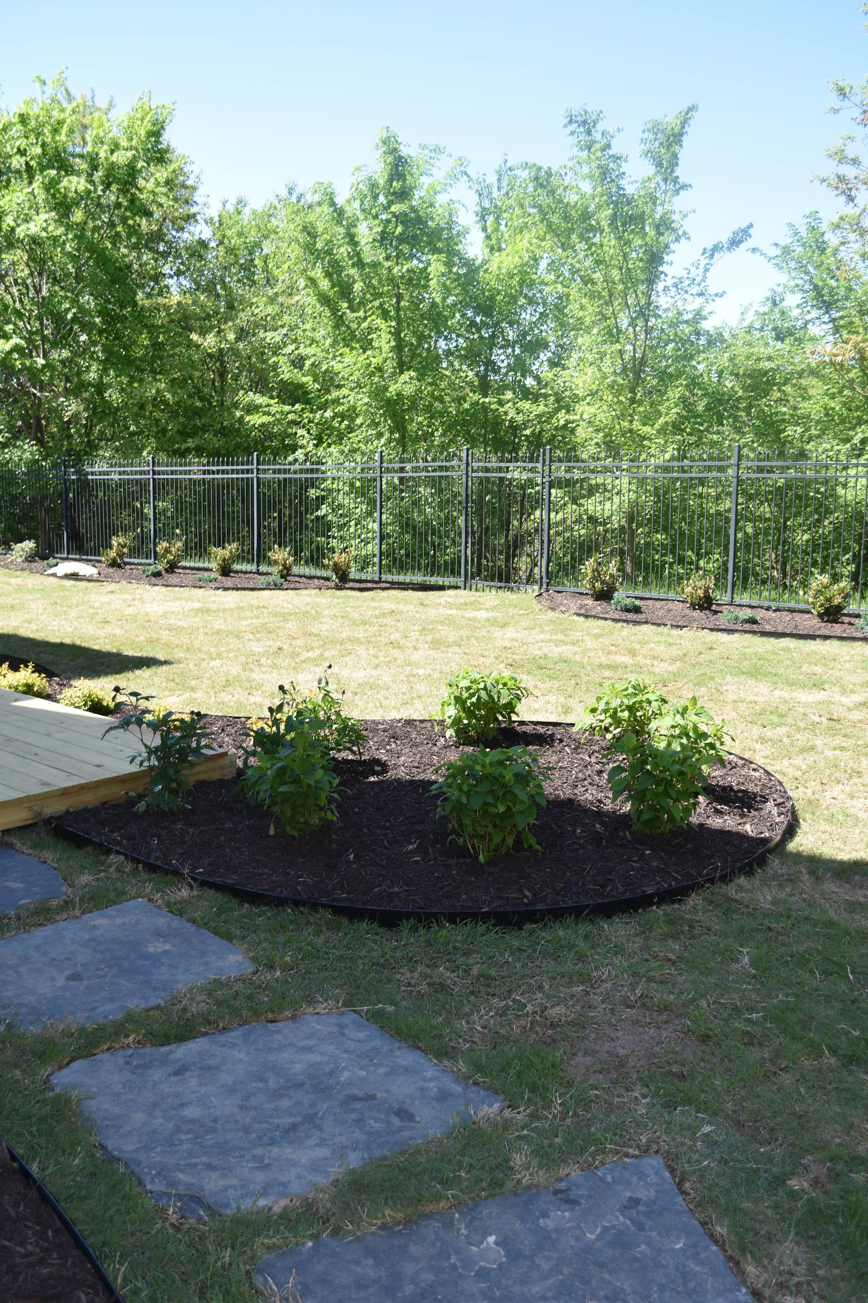 Bentonville Resident-Backyard