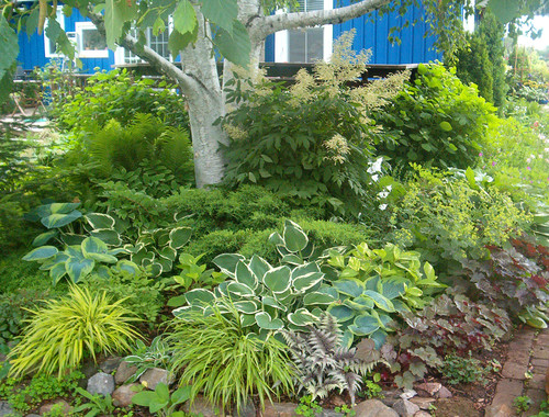 Landscaping Challenges #4: Successfully Growing Anything in Shade - Solutions For 6 Common Landscaping Challenges INSTALL-IT-DIRECT