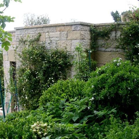 Blasen Gardens contemporary-landscape