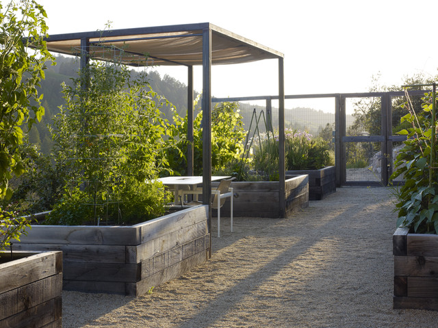 this is an example of a rustic backyard vegetable garden landscape in san francisco