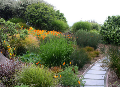 Wildlife Garden Design Tip Choose A Simple Color Palette