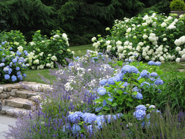 Blue and white garden traditional landscape Better homes and gardens flower bed designs
