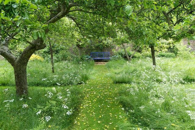 Blue Bench transitional-garden