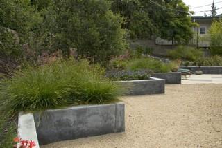 Bonifield Residence midcentury-landscape
